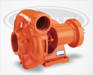 Berkeley Frame Mount Centrifugal Series PumpsPart #:B3ZRM