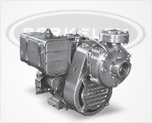 Berkeley High-Pressure Air-Cooled Gas Engine Drive Series