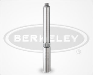 Berkeley TrimLine 4 Inch Submersible Well PumpPart #:L20P4EMGS