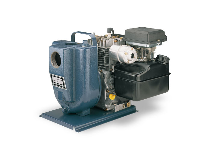 Sta-Rite Engine-Driven Self-Priming Pump 3 HPPart #:EEDDH
