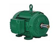Wilo ODP Foot-Mount Motors - NL and SCP